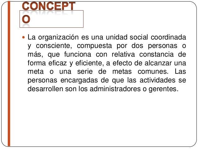 Concepto e importancia de la organizaci n for Concepto de organizacion de oficina