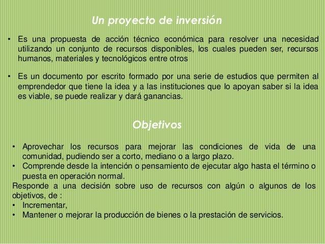 Concepto E Importancia De Los Proyectos De Inversion