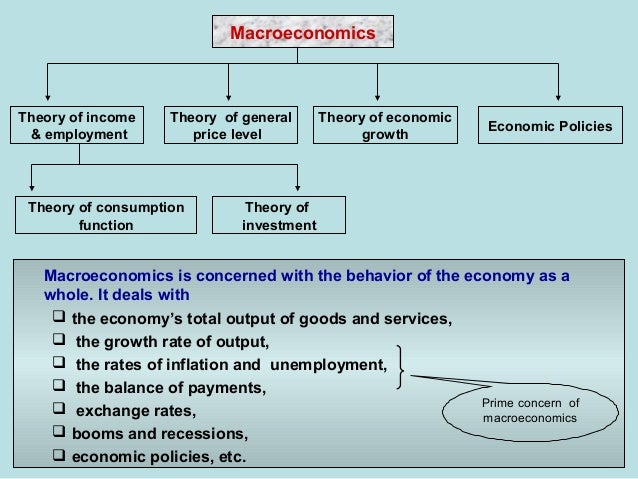 department of economics macroeconomic theory and Two students sitting at a table in an office with professor hall  you will learn the  general principles of economics, microeconomic and macroeconomic theory,.