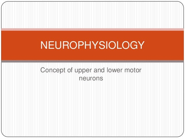 neurophysiology concepts Describe the multivariate linear methods most commonly used in neurophysiology and show that they can be extended to assess the existence of nonlinear interdependences between signals we then review the concepts of entropy and mutual information followed by a detailed description of nonlinear methods based on.