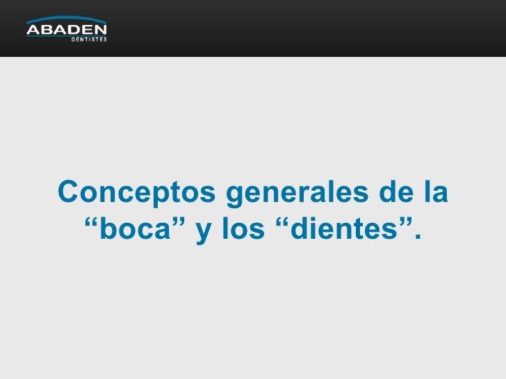 """Conceptos generales de la """"boca"""" y los """"dientes""""."""