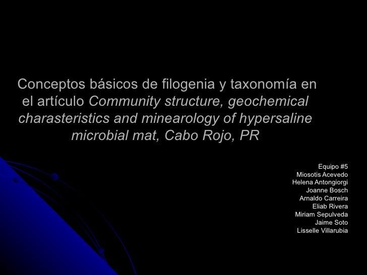 Conceptos básicos de filogenia y taxonomía en el artículo  Community structure, geochemical charasteristics and minearolog...