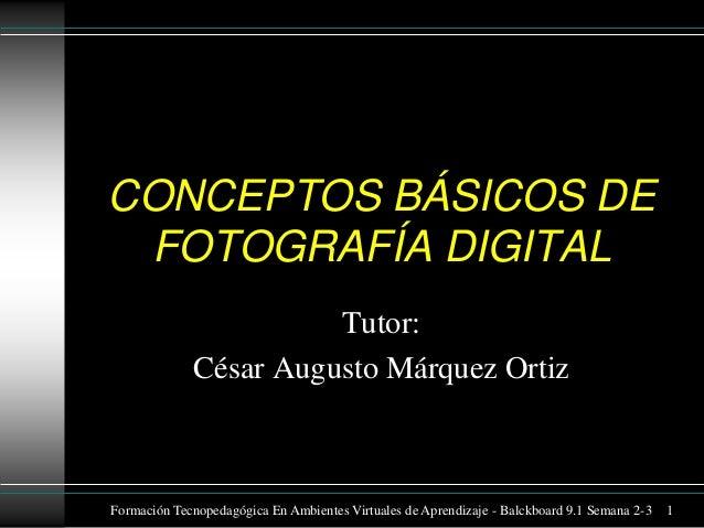 CONCEPTOS BÁSICOS DE FOTOGRAFÍA DIGITAL Tutor: César Augusto Márquez Ortiz  Formación Tecnopedagógica En Ambientes Virtual...
