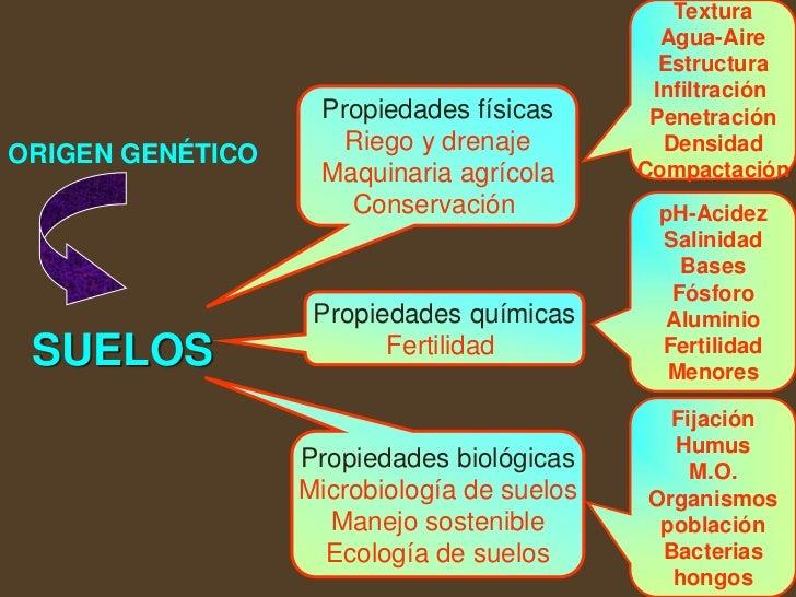 Conceptos b sicos de suelos 2009 for Cuales son las caracteristicas del suelo