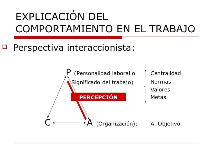 EXPLICACIÓN DEL COMPORTAMIENTO EN EL TRABAJO <ul><li>Perspectiva interaccionista: </li></ul><ul><li>P  (Personalidad labor...