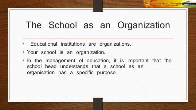 SCHOOL AS AN ORGANISATION PDF