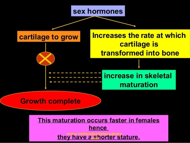 Concepts of growth and development 2 36 sex malvernweather Choice Image