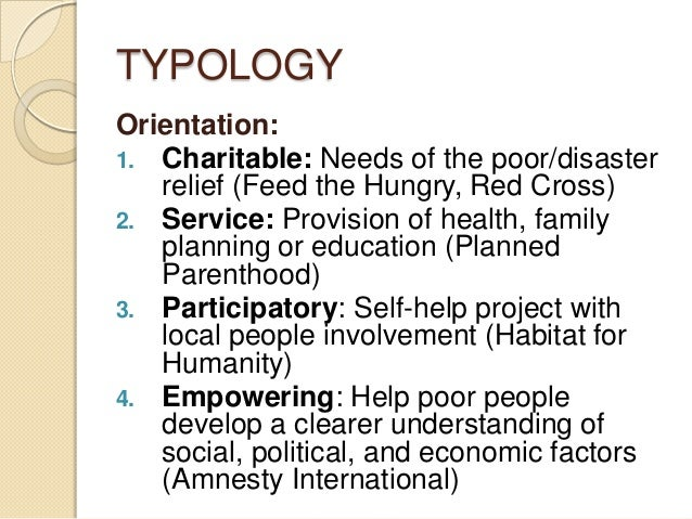 what is non governmental organization pdf