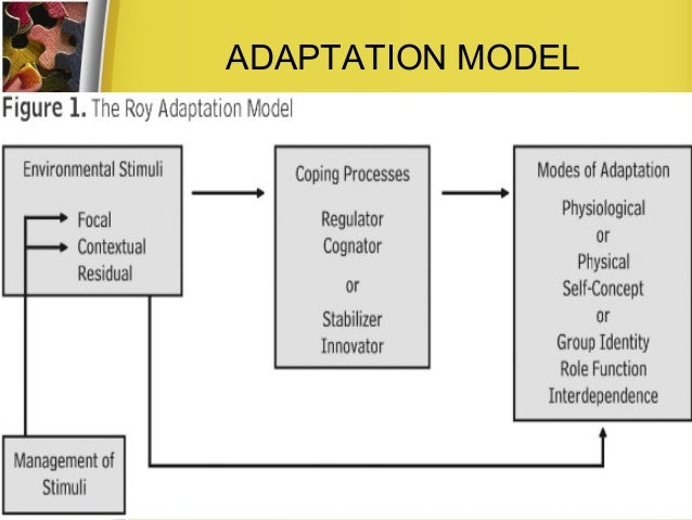 example of roy adaptation model A critical analysis of using roy's adaptation model in nursing research  phillip sister callista roy adaptation model,.
