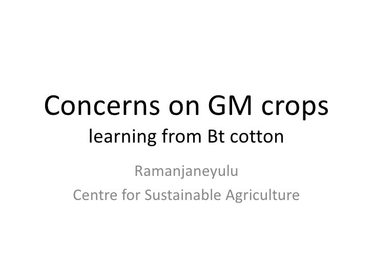 Concerns on GM crops    learning from Bt cotton           Ramanjaneyulu  Centre for Sustainable Agriculture