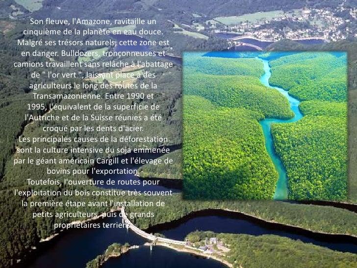 Son fleuve, l'Amazone, ravitaille un cinquième de la planète en eau douce. Malgré ses trésors naturels, cette zone est en ...