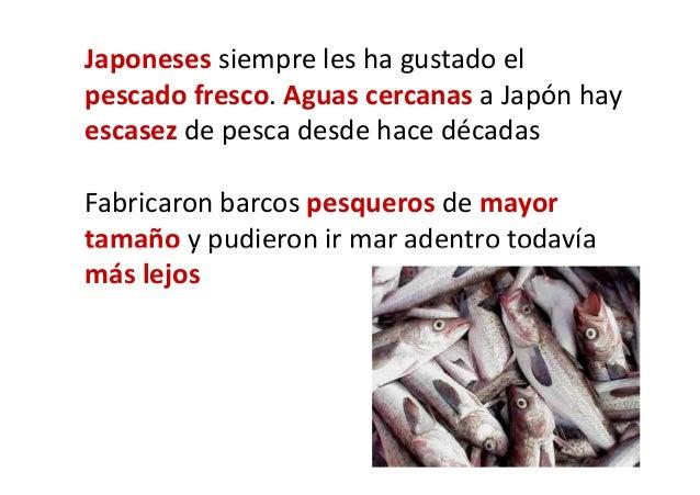 Japoneses no les gusta el sabor del pescado cuando no es fresco. Para resolverlo, instalaron congeladores en los pesqueros...