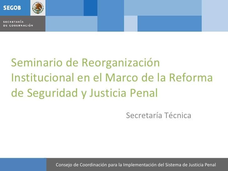Seminario de Reorganización Institucional en el Marco de la Reforma de Seguridad y Justicia Penal                         ...