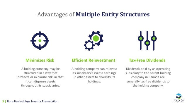 AdvantagesofMultipleEntityStructures Minimizes Risk Efficient Reinvestment Tax-Free Dividends A holding company may be...