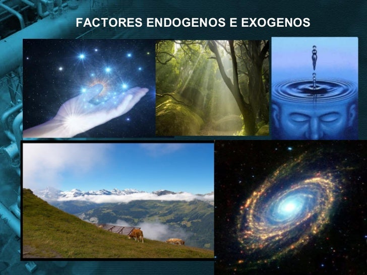 FACTORES ENDOGENOS E EXOGENOS