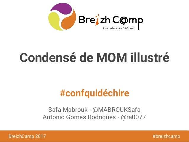 BreizhCamp 2016 #BzhCmp #confquidéchire BreizhCamp 2017 #breizhcamp Condensé de MOM illustré Safa Mabrouk - @MABROUKSafa A...