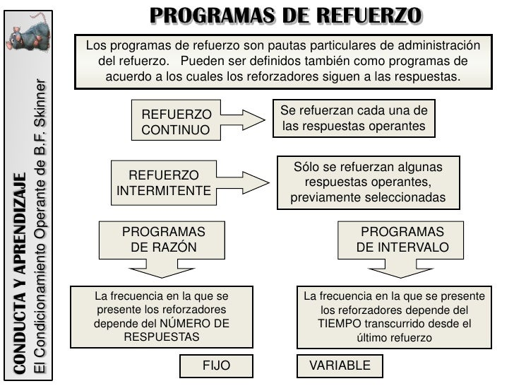 Resultado de imagen de programas de refuerzo