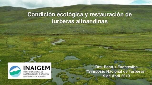 """Condición ecológica y restauración de turberas altoandinas Dra. Beatriz Fuentealba """"Simposio Nacional de Turberas"""" 9 de Ab..."""
