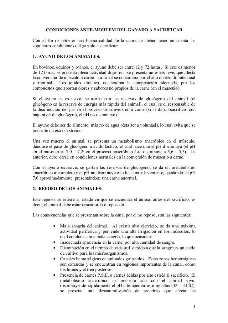 CONDICIONES ANTE-MORTEM DEL GANADO A SACRIFICARCon el fin de obtener una buena calidad de la carne, se deben tener en cuen...