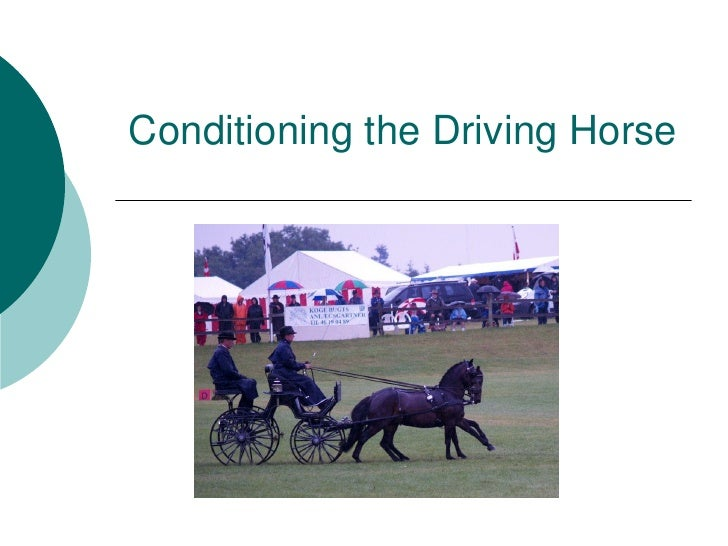 Conditioning the Driving Horse