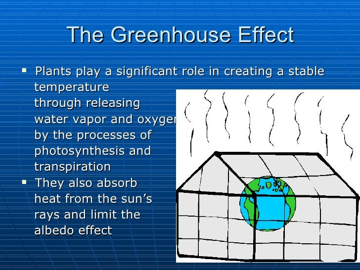 What is greenhouse effect essay level