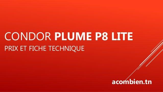 Condor Plume P8 Lite Tunisie