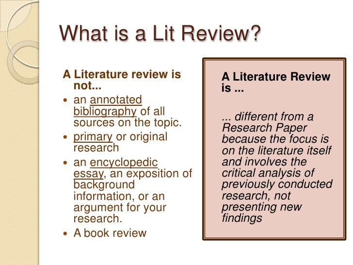 difference between essay and literature review