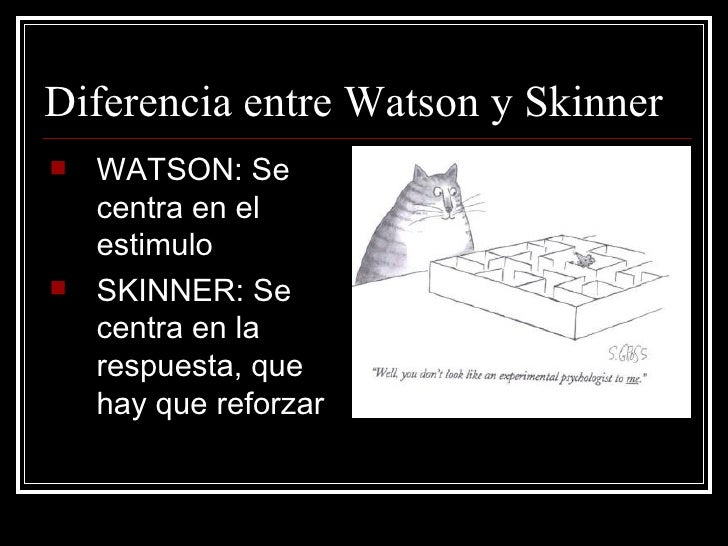 pavlov watson and skinner A comparison of two theories of learning skinner and watson pavlov rang a bell when his dog was going to be fed.