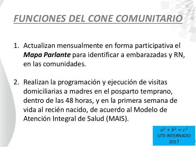 FUNCIONES DEL CONE COMUNITARIO 1. Actualizan mensualmente en forma participativa el Mapa Parlante para identificar a embar...