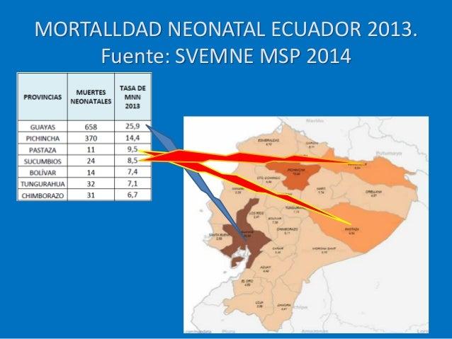 MORTALLDAD NEONATAL ECUADOR 2013. Fuente: SVEMNE MSP 2014