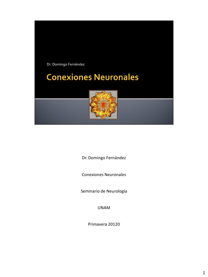 Dr. Domingo Fernández   Conexiones Neuronales   Seminario de Neurología           UNAM      Primavera 20120               ...