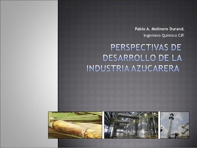 Pablo A. Molinero Durand.    Ingeniero Químico CIP.