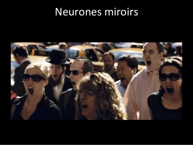 Psycho et neuro marketing la manipulation douce for Neurones miroir
