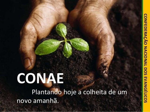 CONFEDERAÇÃO NACIONAL DOS EVANGÉLICOS  CONAE  Plantando hoje a colheita de um  novo amanhã.