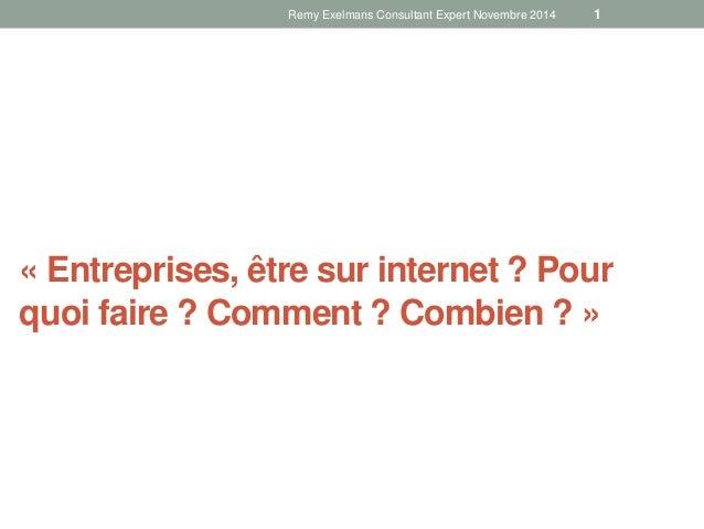 Remy Exelmans Consultant Expert Novembre 2014 1  « Entreprises, être sur internet ? Pour  quoi faire ? Comment ? Combien ?...