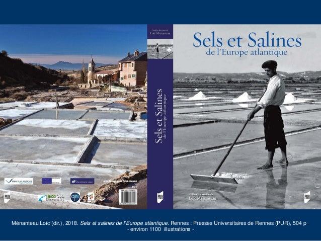 Sels et salines de l'Europe atlantique Slide 2