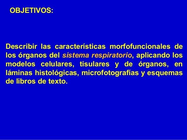 Histología y Embriología del Sistema Respiratorio