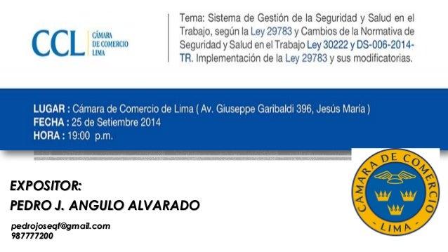 EXPOSITOR: PEDRO J. ANGULO ALVARADO pedrojoseqf@gmail.com 987777200