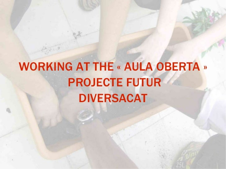 WORKING AT THE «AULA OBERTA» PROJECTE FUTUR DIVERSACAT