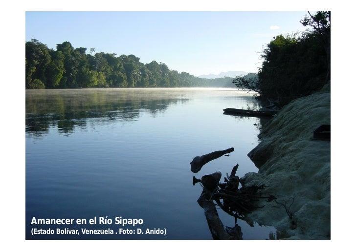 Amanecer en el Río Sipapo(Estado Bolívar, Venezuela . Foto: D. Anido)
