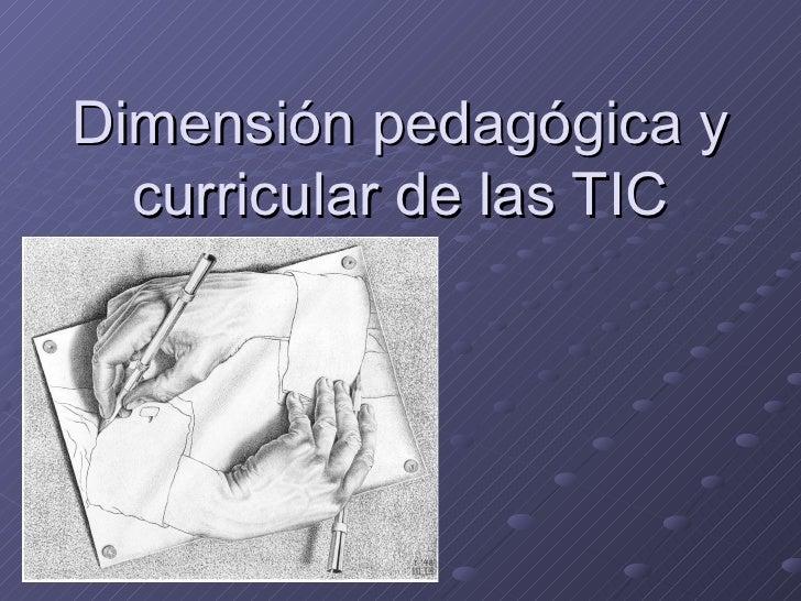 Dimensión pedagógica y curricular de las TIC