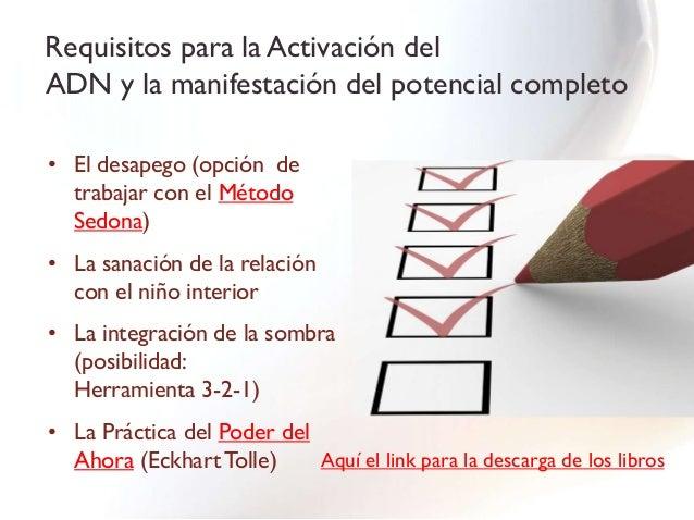 TallerLa Activación del ADN ydel Ser Multidimensional        17/11/12 de 9 a 18hs   Lugar: Hotel Reina Suites and Towers; ...