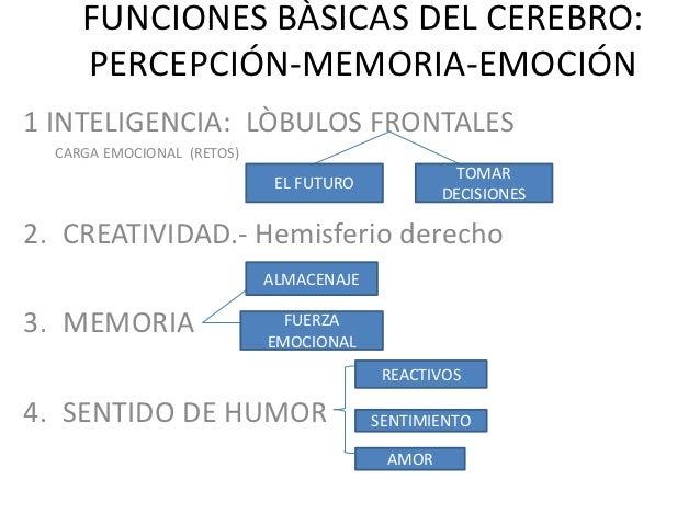 FUNCIONES BÀSICAS DEL CEREBRO:     PERCEPCIÓN-MEMORIA-EMOCIÓN1 INTELIGENCIA: LÒBULOS FRONTALES  CARGA EMOCIONAL (RETOS)   ...