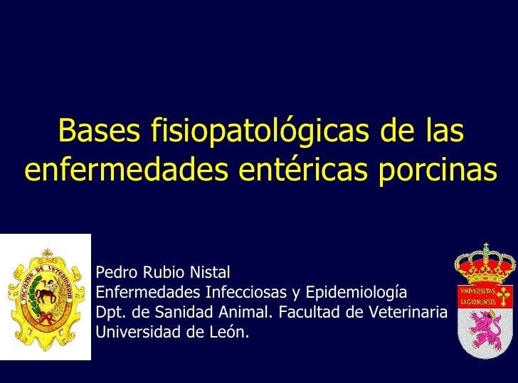 Bases fisiopatológicas de las enfermedades entéricas porcinas Pedro Rubio Nistal Enfermedades Infecciosas y Epidemiología ...