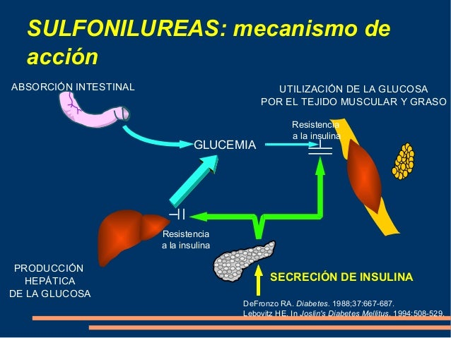 Conferencia sulfonilureas y metiglinidas