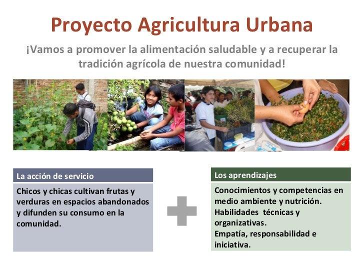Proyecto Agricultura Urbana ¡Vamos a promover la alimentación saludable y a recuperar la tradición agrícola de nuestra com...