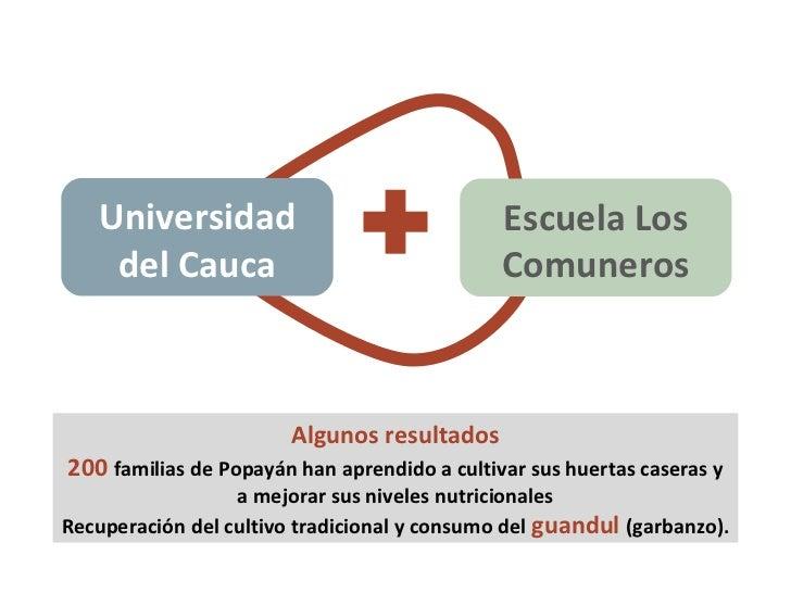 Universidad del Cauca Escuela Los Comuneros Algunos resultados 200  familias de Popayán han aprendido a cultivar sus huert...