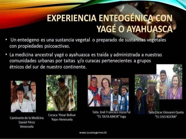 CONFERENCIA UC 2016: VISIÓN INTEGRAL HOLÓNICA DE LA EXPERIENCIA ENTEOGÉNICA CON YAGÉ O AYAHUASCA Slide 3