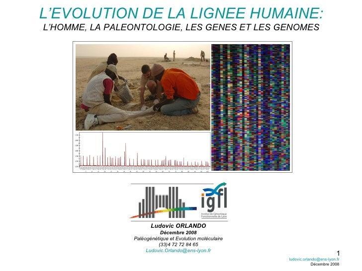 L'EVOLUTION DE LA LIGNEE HUMAINE: L'HOMME, LA PALEONTOLOGIE, LES GENES ET LES GENOMES Ludovic ORLANDO Décembre 2008 Paléog...