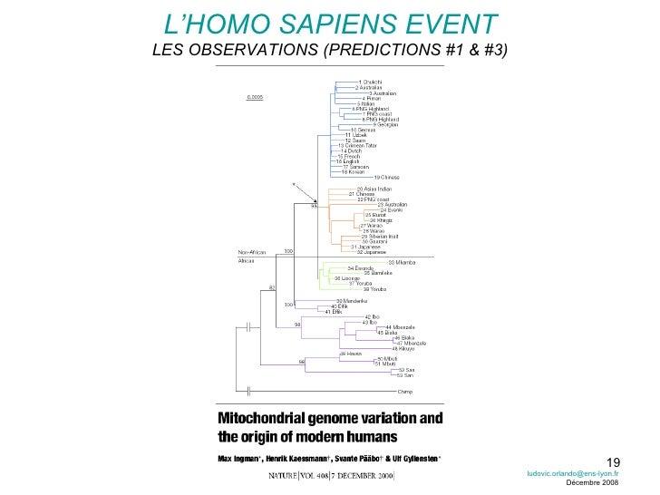 L'HOMO SAPIENS EVENT LES OBSERVATIONS (PREDICTIONS #1 & #3) [email_address] Décembre 2008